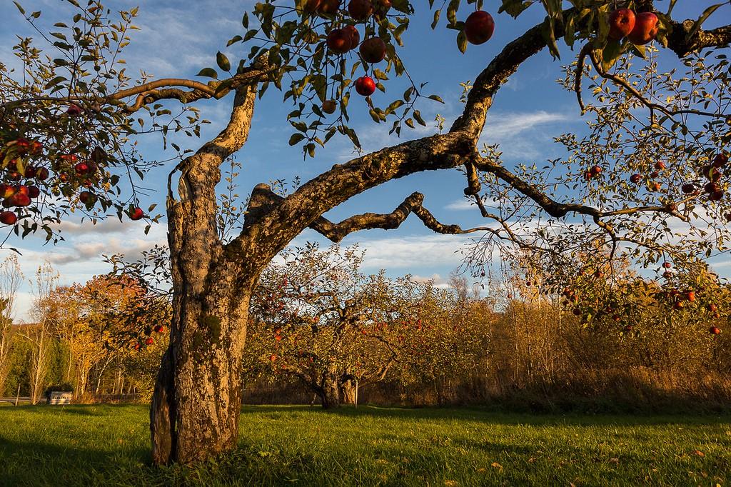 Frelighsburg © Jean-Francois Renaud/Flickr