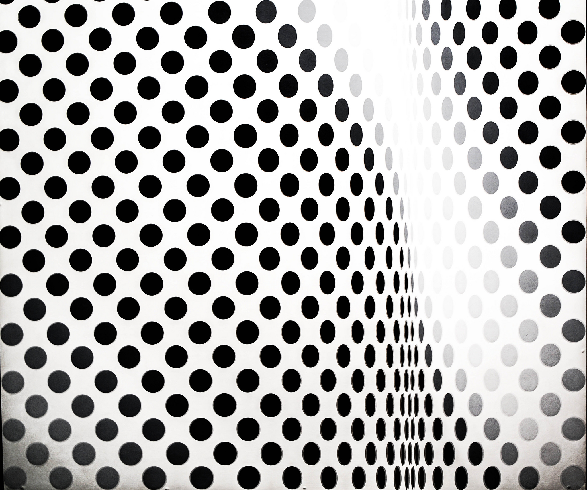 15 things you may not have known about bridget riley