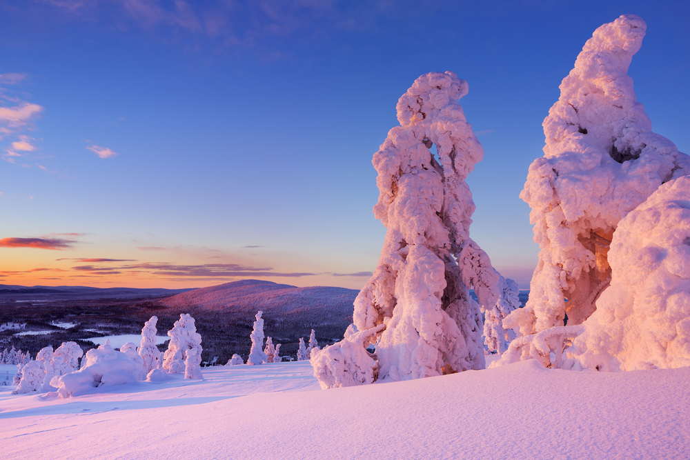 Frozen trees on top of the Levi Fell in Finnish Lapland. Photographed at sunset | ©Sara Winter/Shutterstock
