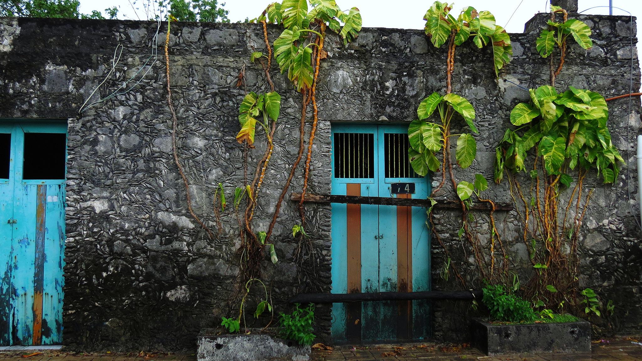 Tranquil Cozumel © Lara Danielle/Flickr
