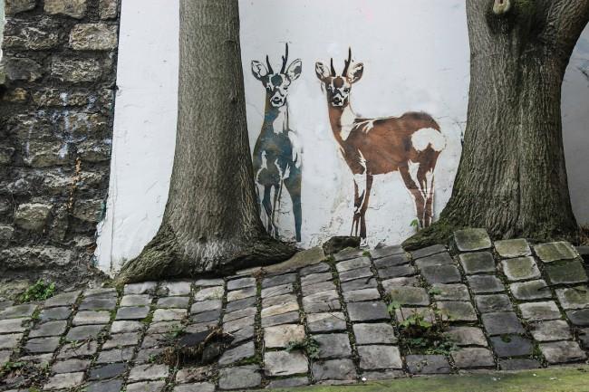 Street Art   © Andy Hay/Flickr