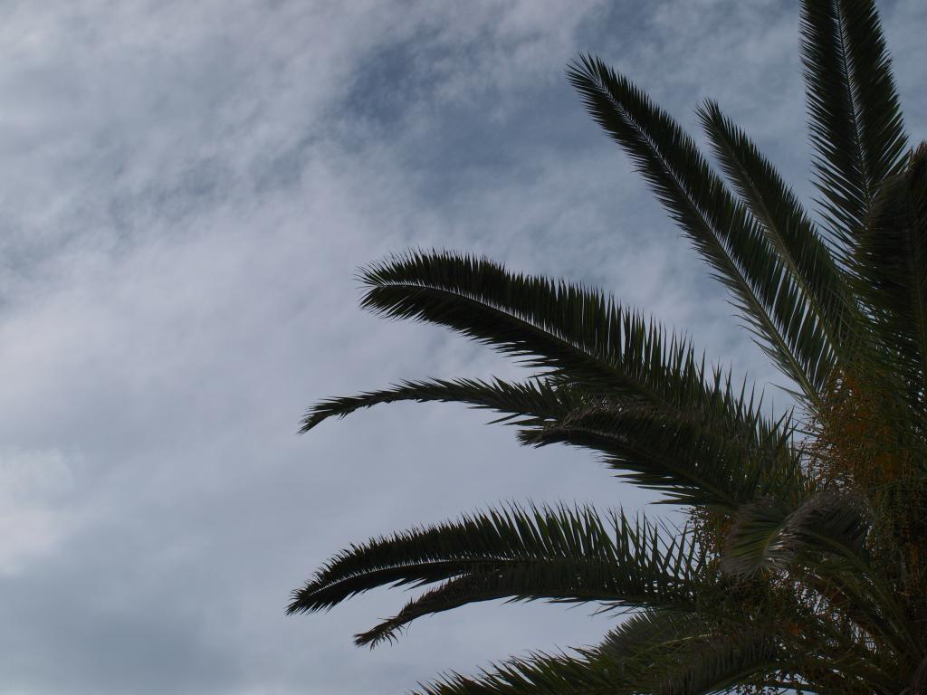 Tenerife | © Ian Palmer/Flickr