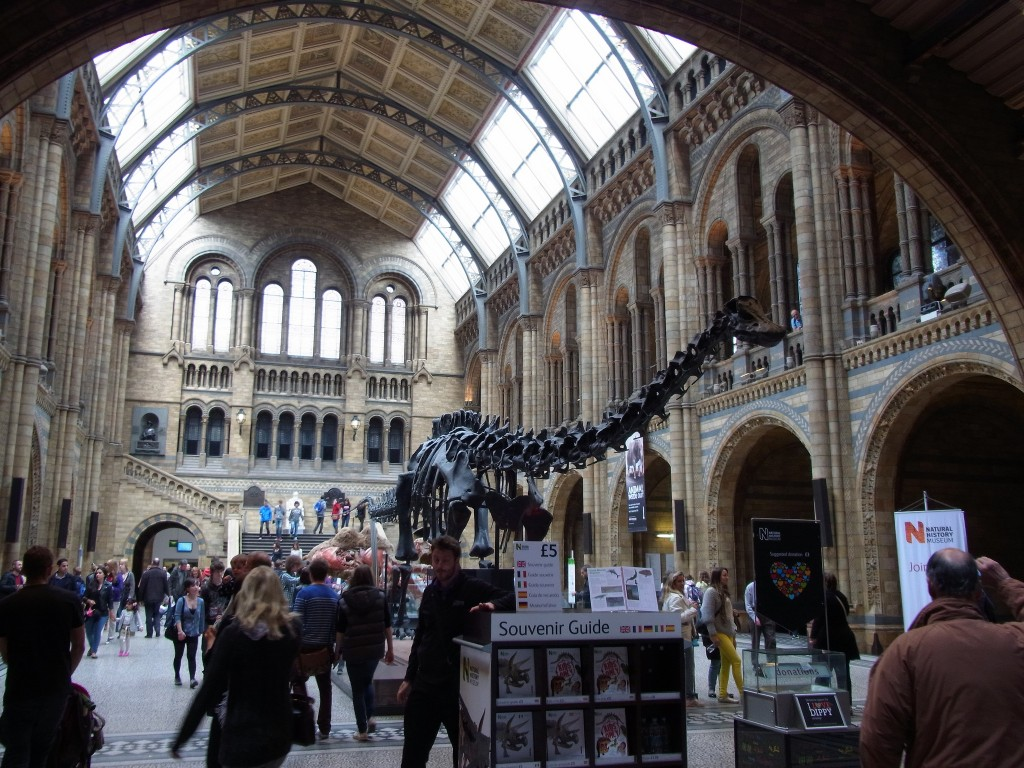 Natural History Museum Foyer © Gordon Wrigley