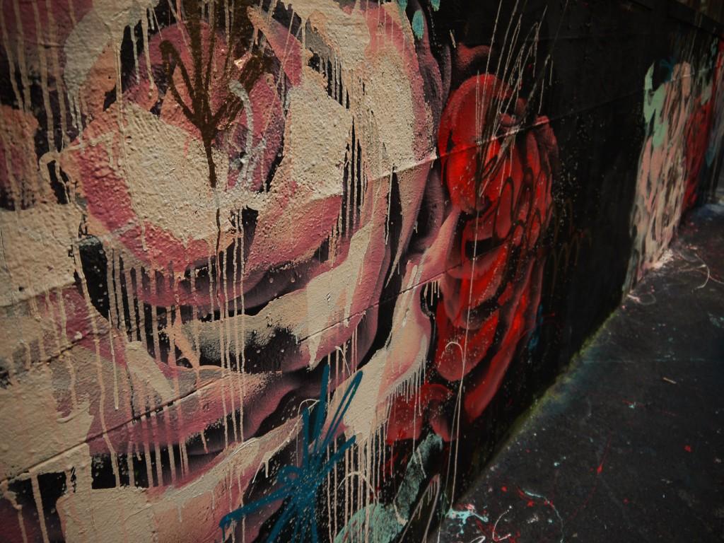 Melting Roses l © Ash Seagrave