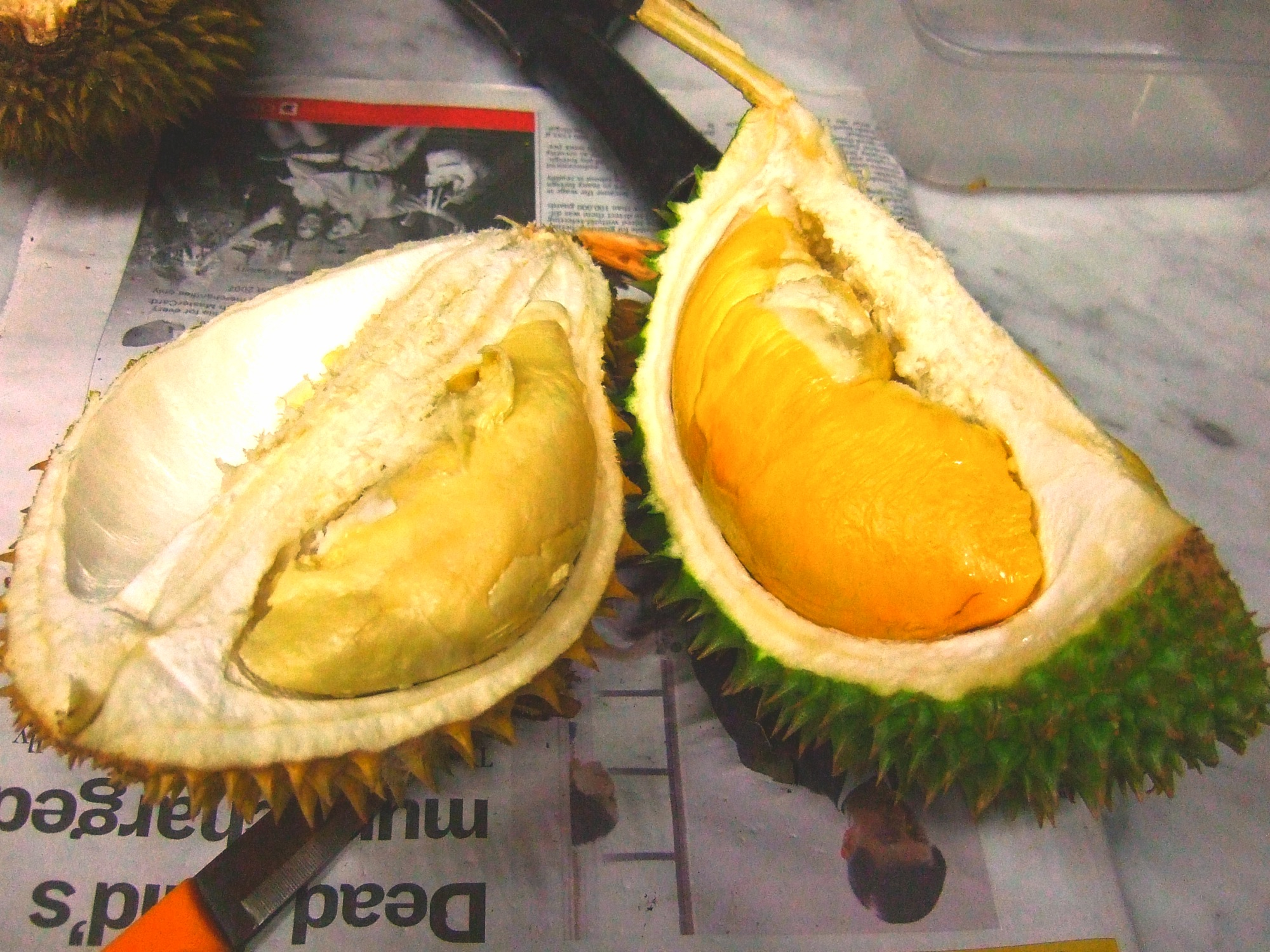 8 things you need to know about durian fruit the world s smelliest