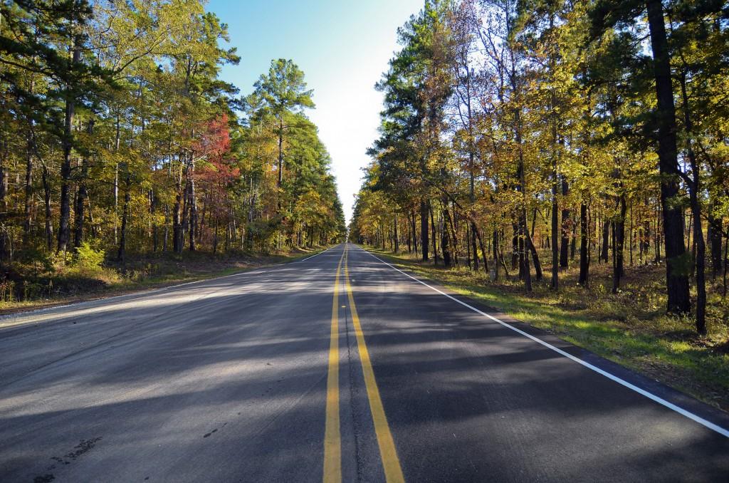 Long road back home © Daniel @scrubhiker