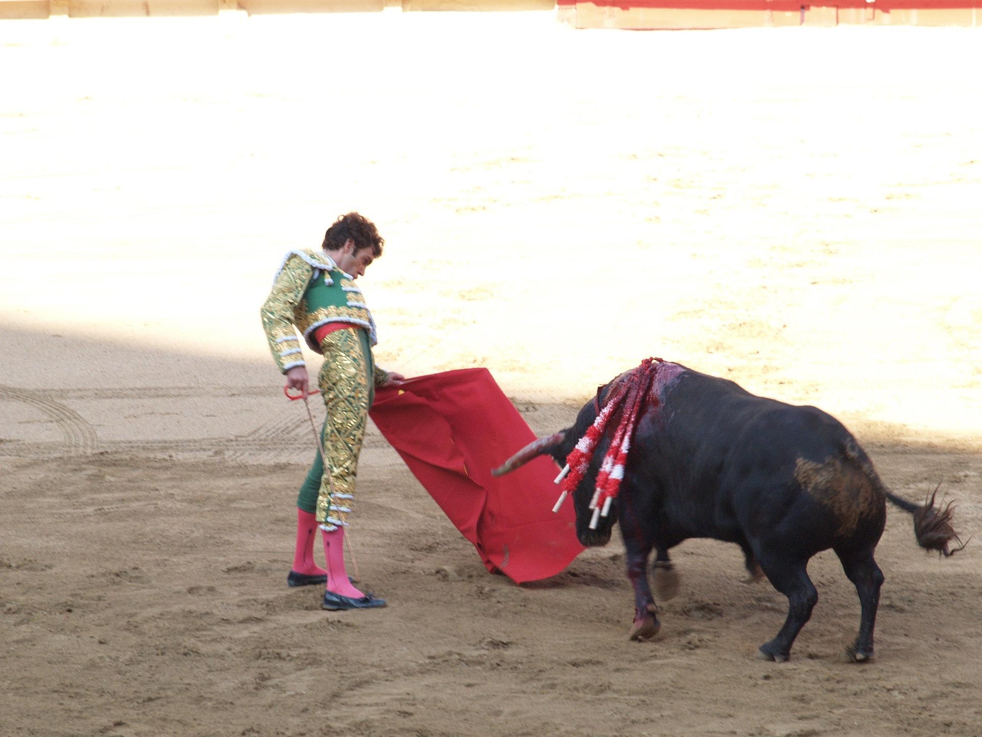 Bullfighting Injuries HD Wallpaper Background