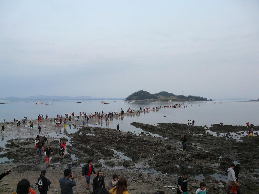 Jindo Miracle Sea Road Festival   © Piotrus
