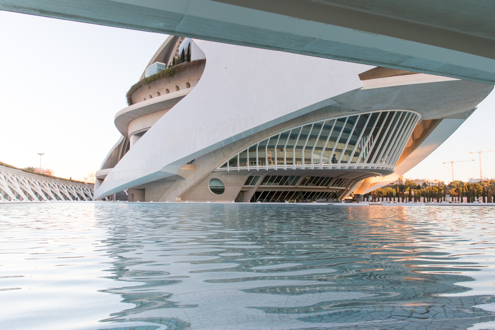 10 Things You Didn T Know About The Ciudad De Las Artes Y Las Ciencias Valencia
