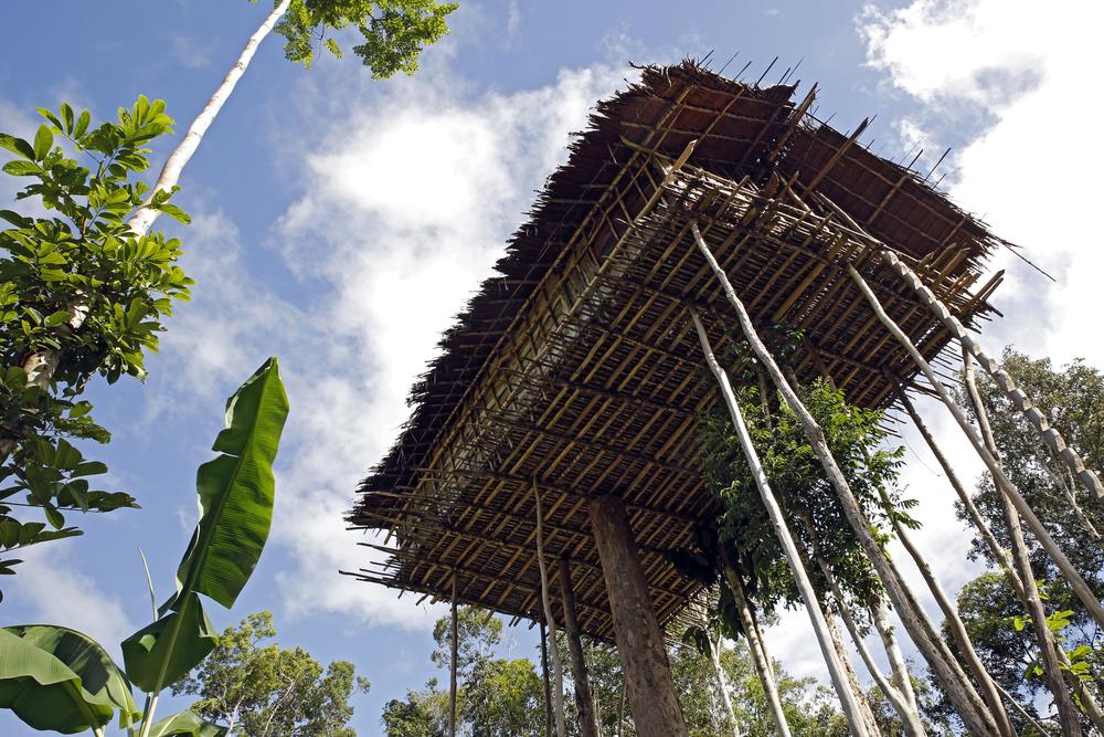 Treehouses of the Korowai Tribe | ©Andaman / Flickr