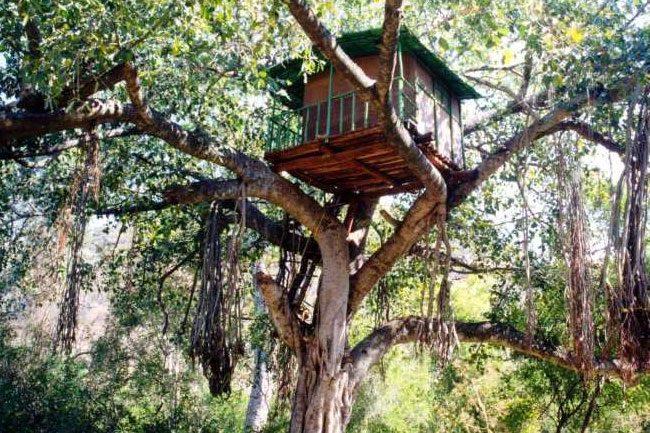 A tree house in Marayoor, Kerala | © Cyrillic/WikiCommons