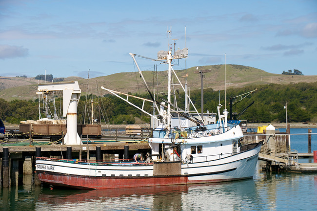 The Best Places For Fishing In Northern California