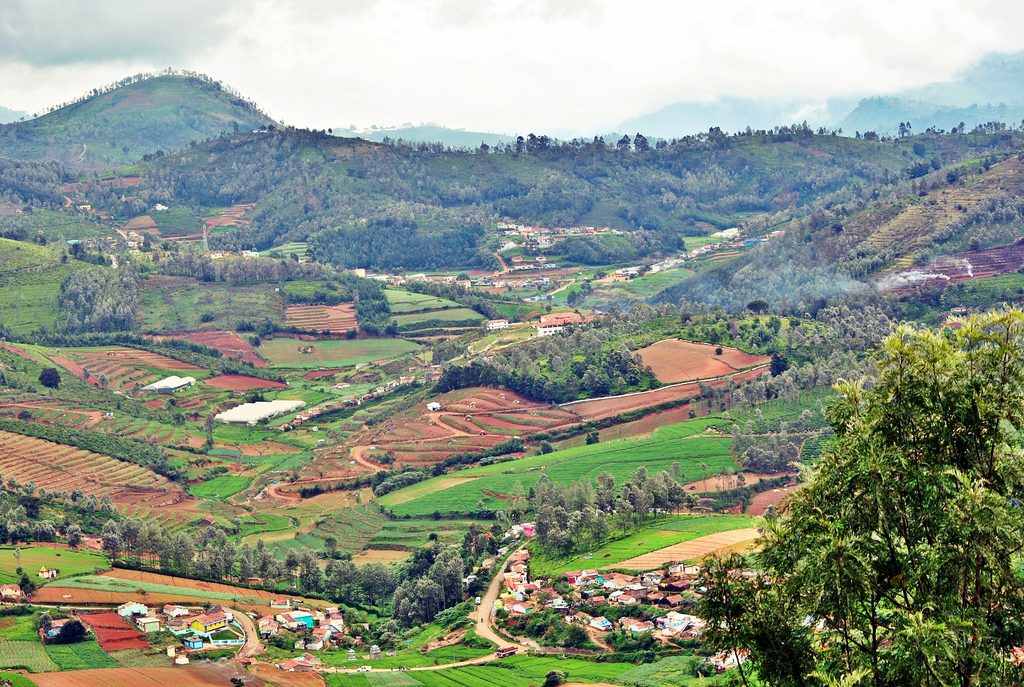 View of Ooty   © Big Eyed Sol / Flickr