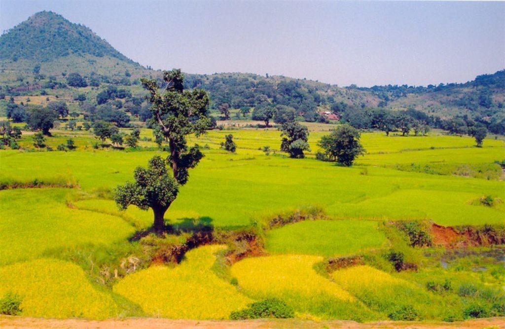View of Araku Valley   © Raj / Flickr