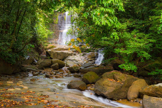 Rock pools and waterfalls amidst the dense jungle in Kubah National Park | © Fabio Lamanna/Shutterstock