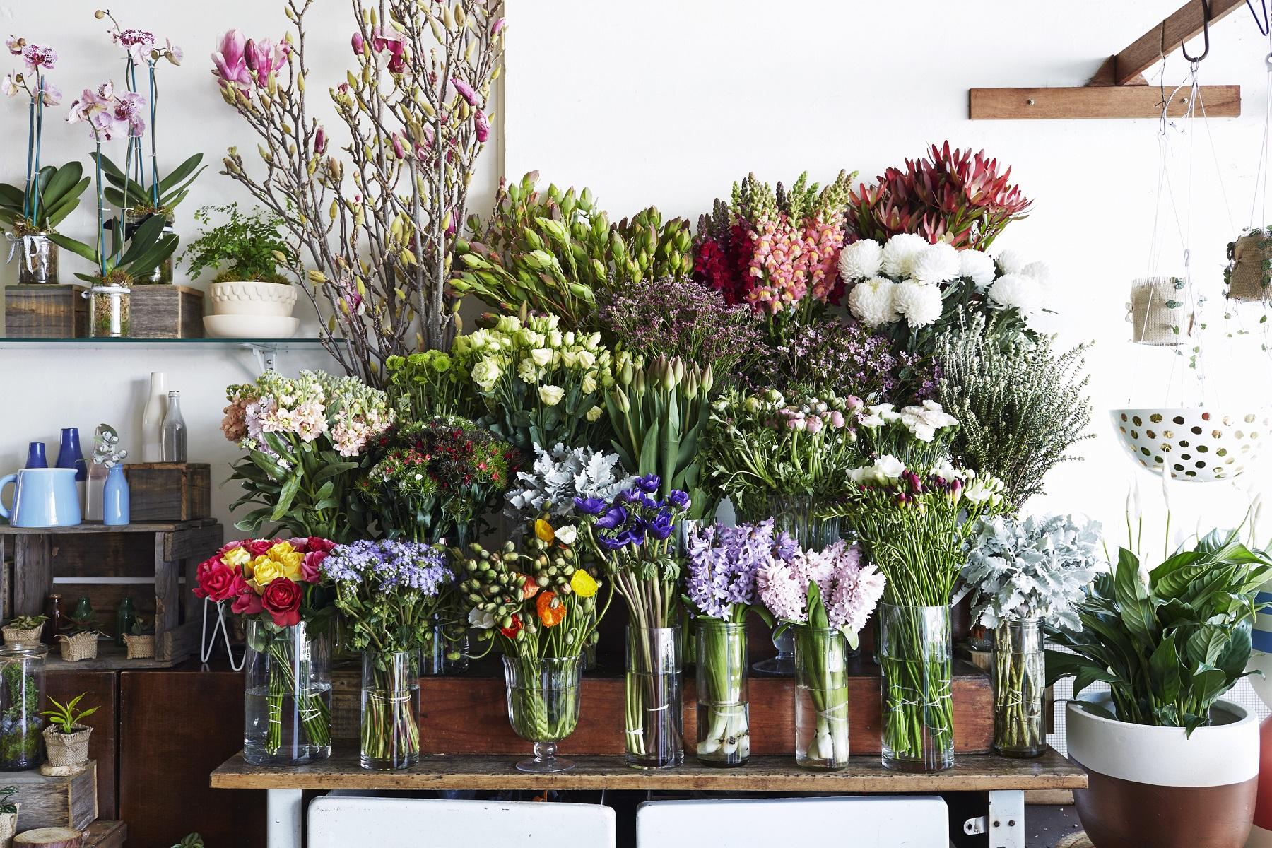 The best florists in melbourne izmirmasajfo