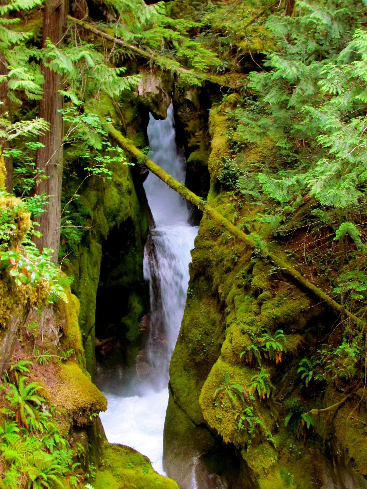 The Most Non-Touristy Experiences in Washington State