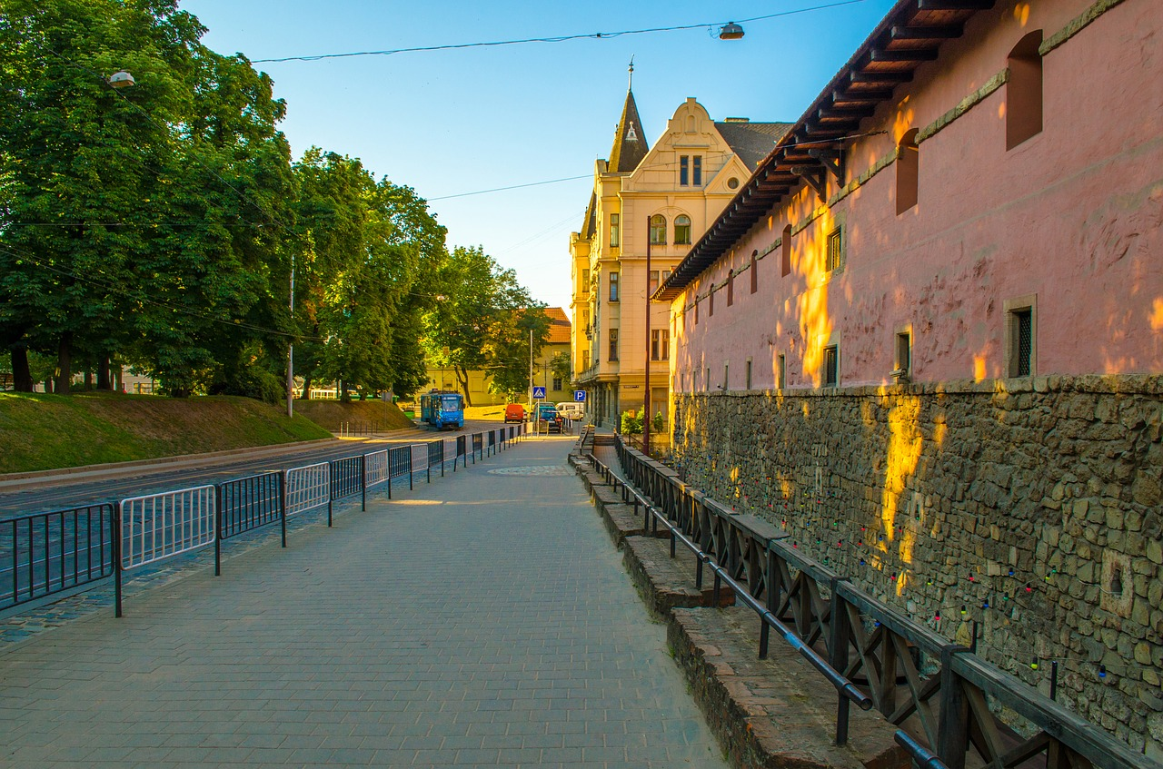 Libraries of Lviv region: a selection of sites