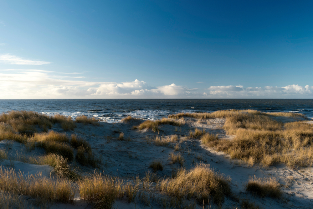 Island Amrum, Germany | © bluecrayola/Shutterstock