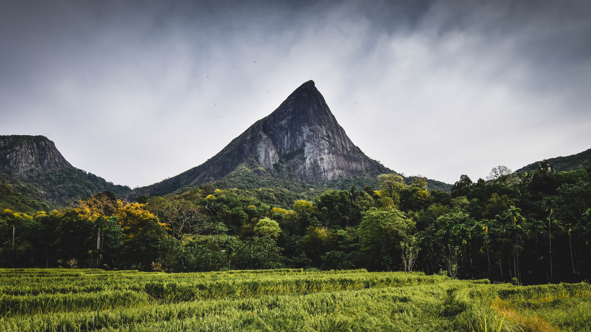 5c316e10fc36cb The Best Hiking and Trekking Trails in Sri Lanka