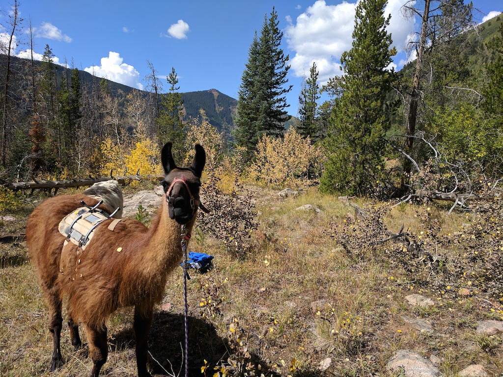 The Best Things to See and Do in Vail, Colorado