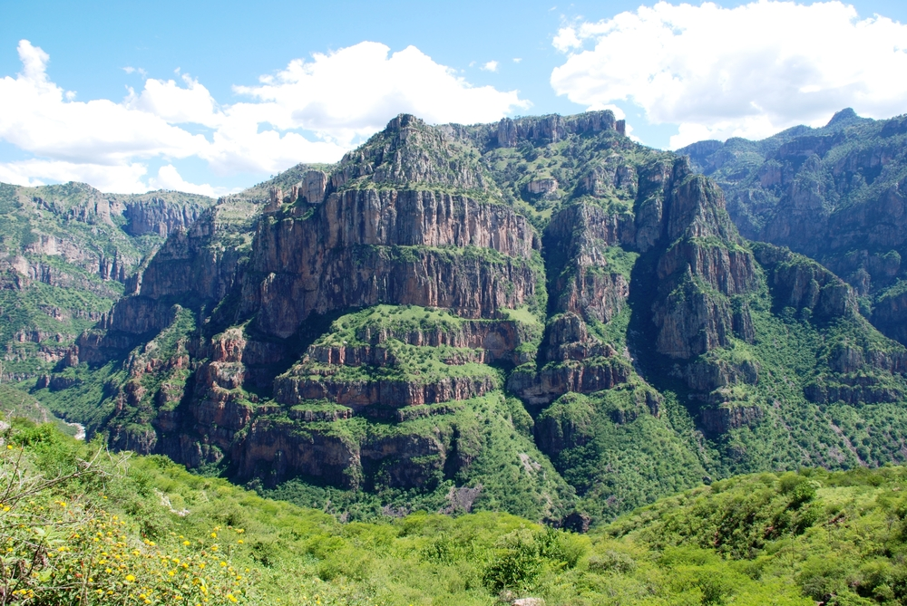 Landscape In Mexico
