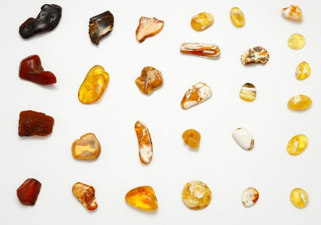 Colours_of_Baltic_Amber