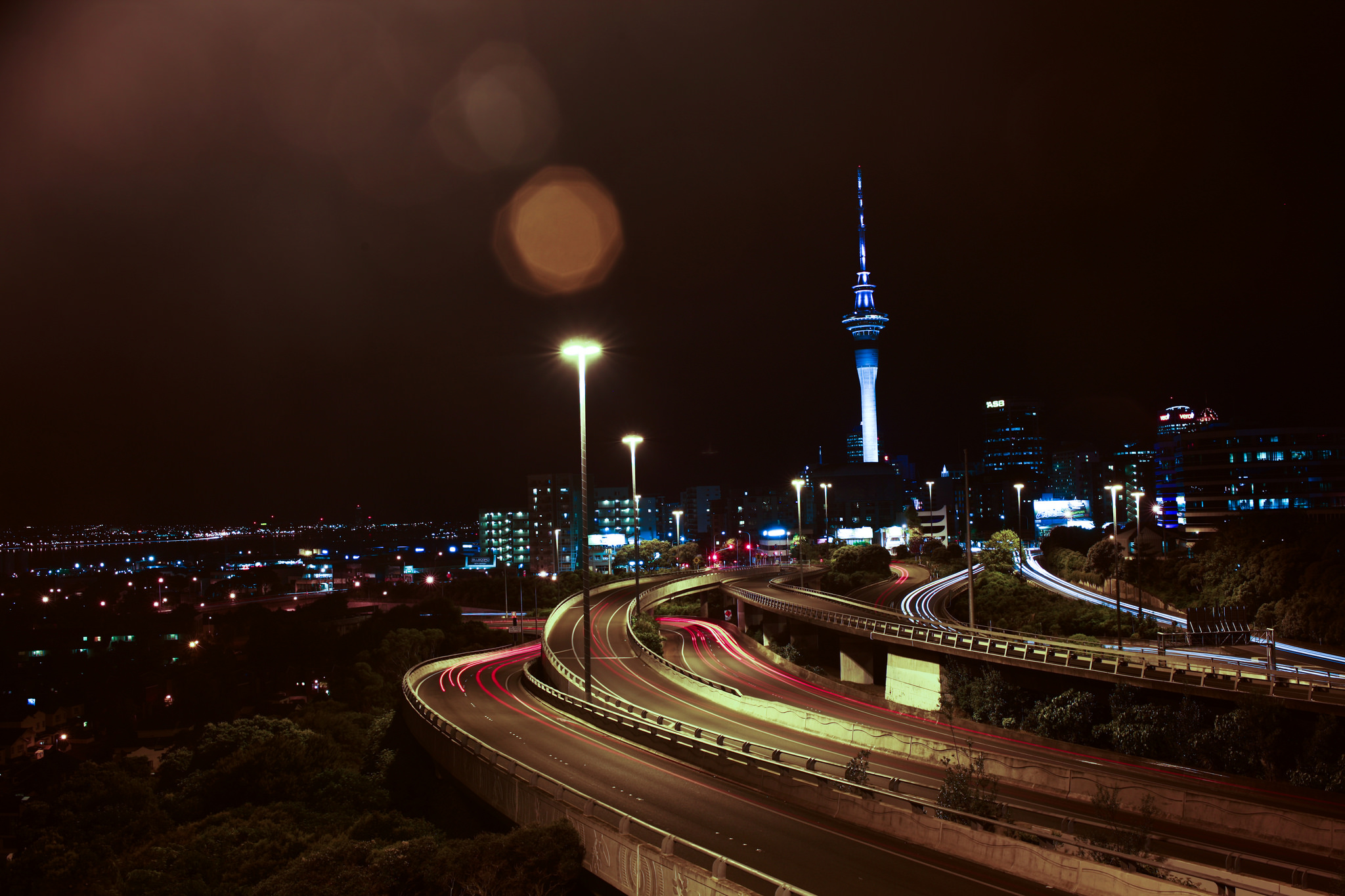 How To Navigate Transport in Auckland, New Zealand