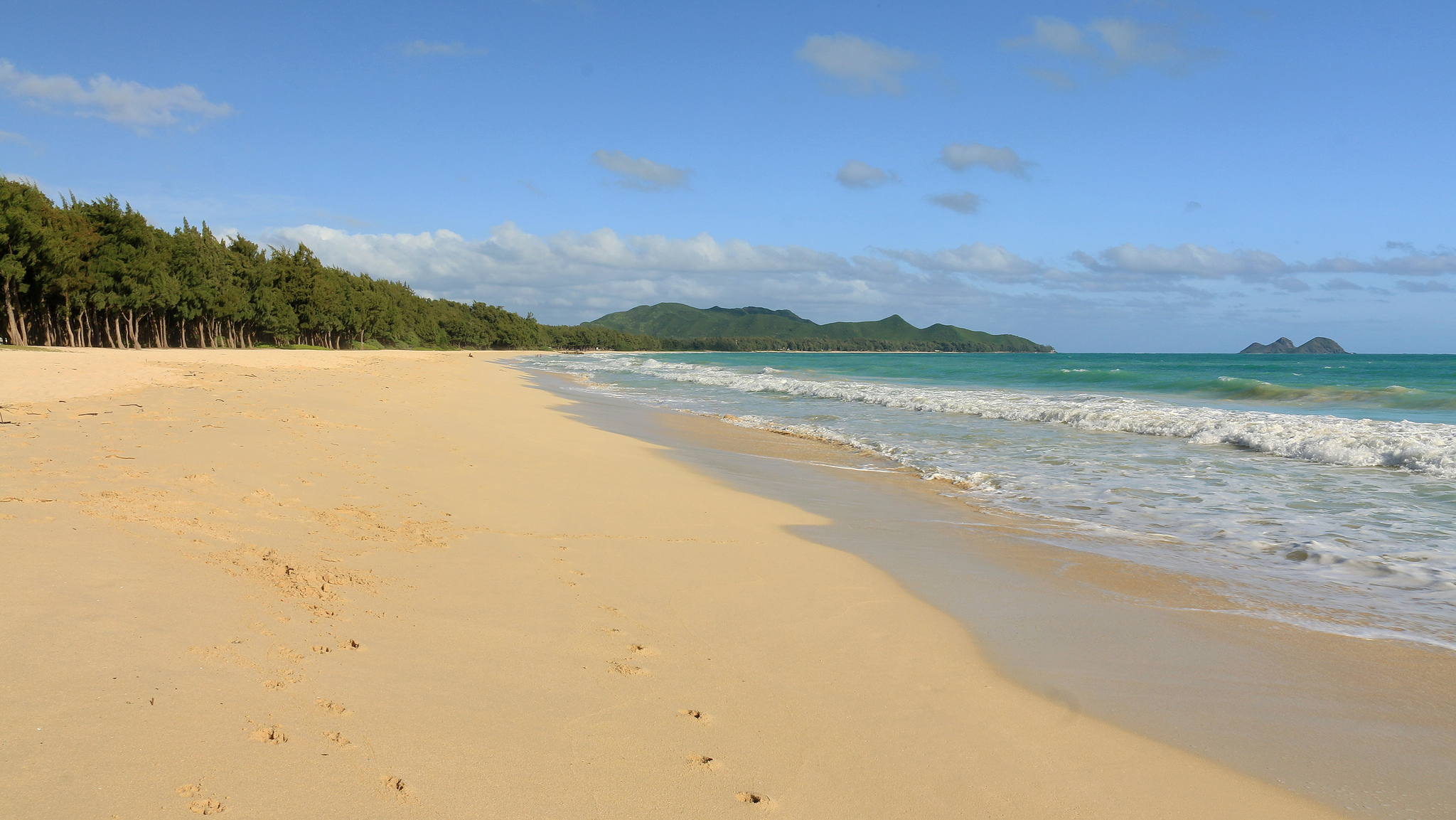 The 7 Best Oahu Beaches for Kids