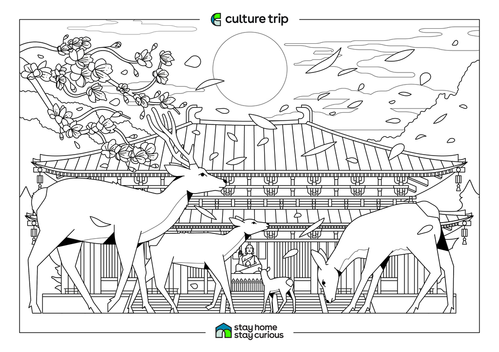 South Africa Animal Coloring Pages - Get Coloring Pages   724x1024