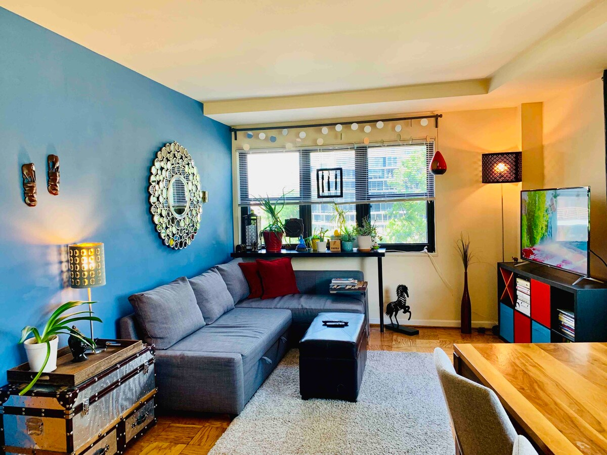 The Best Airbnbs In Washington Dc